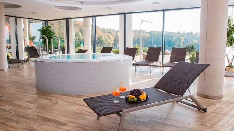 Relaxujte v našem hotelovém wellness centru s prosklenou terasou a výhledem do obory s vysokou zvěří.